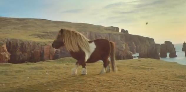 The Pony #DancePonyDance PUB